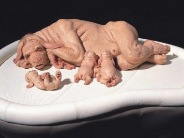 Patricia-Piccinini – The-Young-Family – 2002-2003