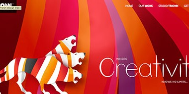 Trionn- a studio design – site responsive design