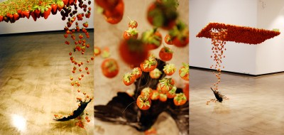 Caire Morgan – Fluid taxidermied crow and strawberries collide – http://www.claire-morgan.co.uk/