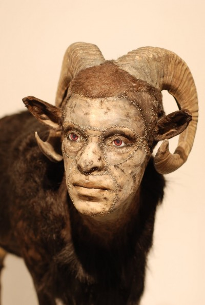 Kate Clark – taxidermie art – http://www.kateclark.com/