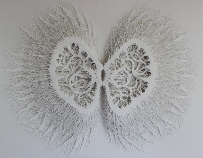 "Rogan Brownart – ""Kernel"" Hand cut layered paper sculpture – http://roganbrownart.blogspot.fr"