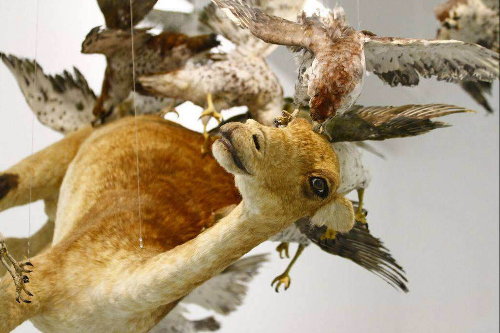Cai Guo-Qiang – Flying Together (2011)