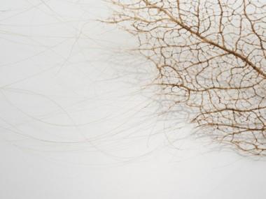 Jenine Shereos – Art Hair -leaf_02_detail