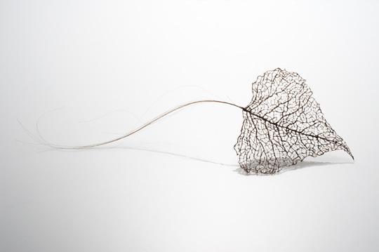 Jenine Shereos – Art Hair -leaf_03