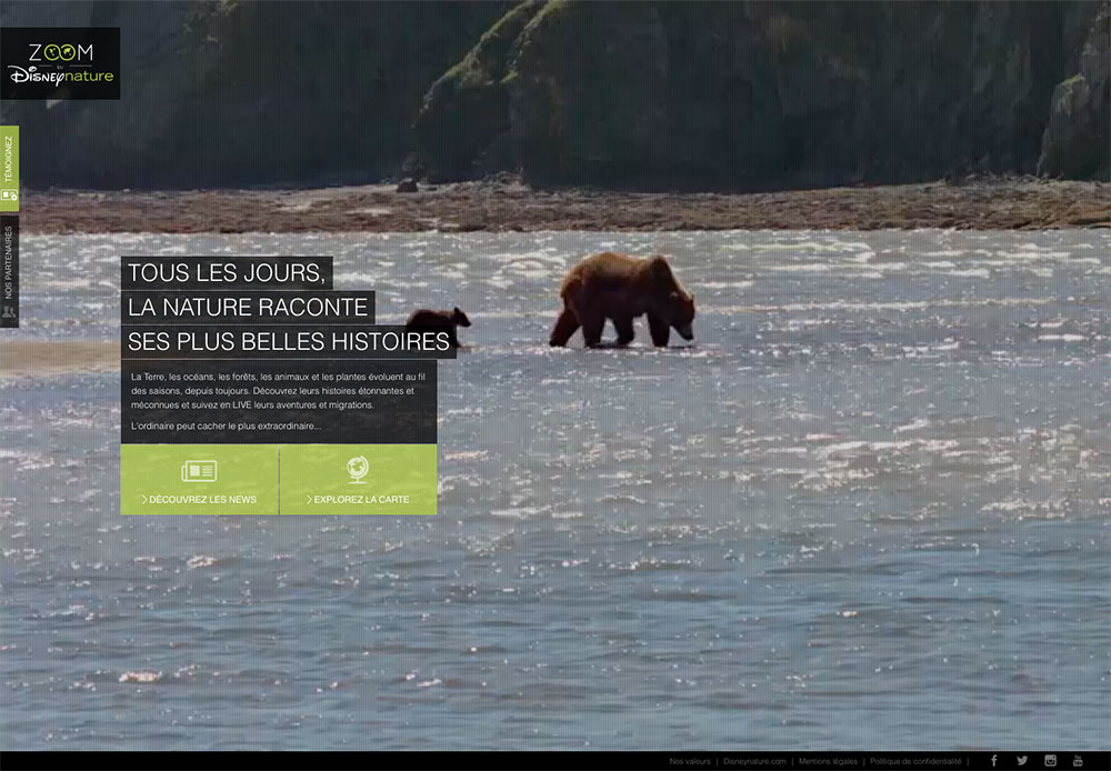 zoom-disney-nature-site-responsive