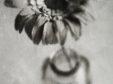 Elena Sarinena – Delicate