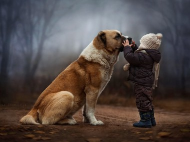 Elena Shumilova Photography #dog #child #animallovers #ambiance