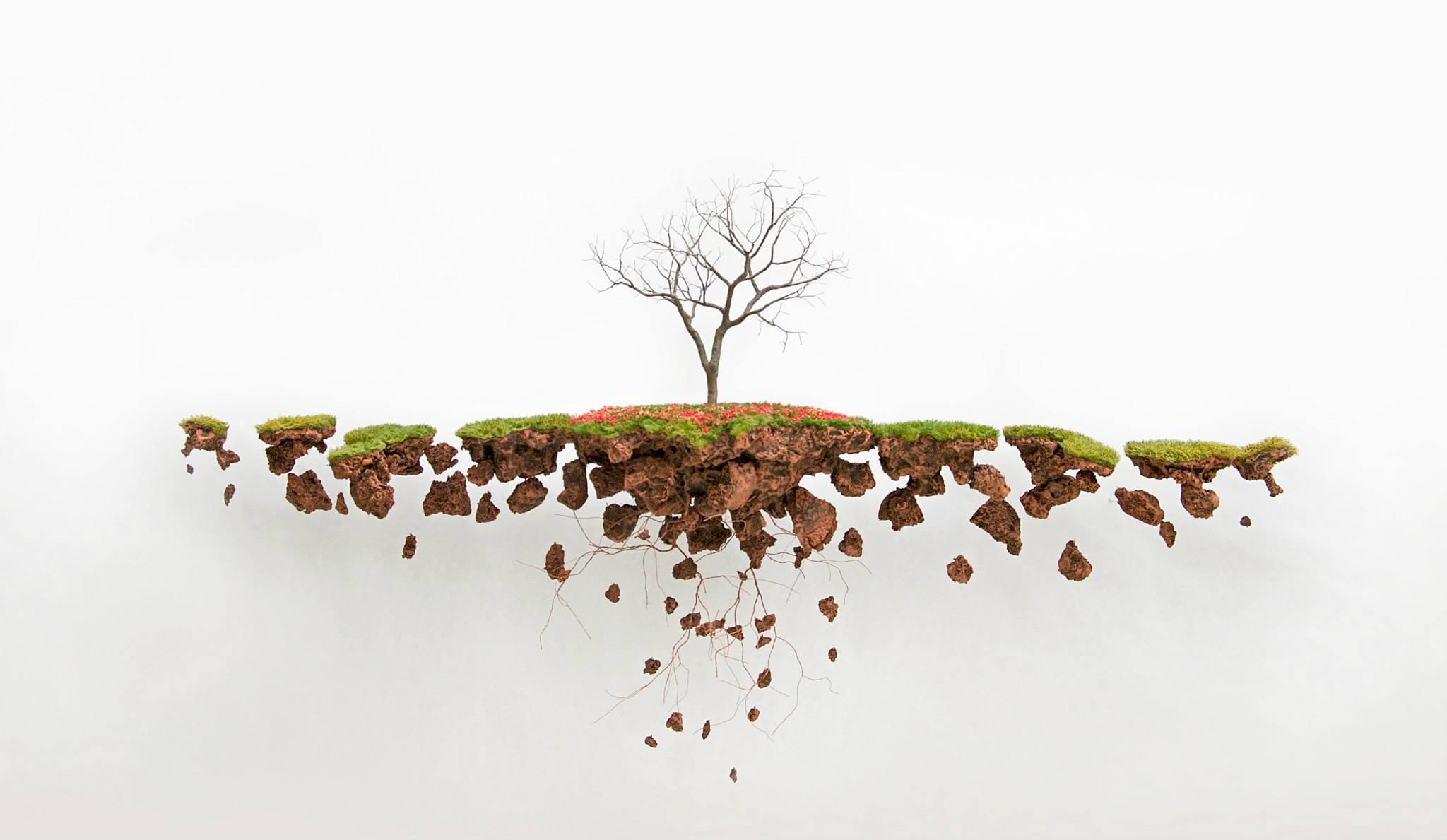 Jorge Mayet – arbre sculpture
