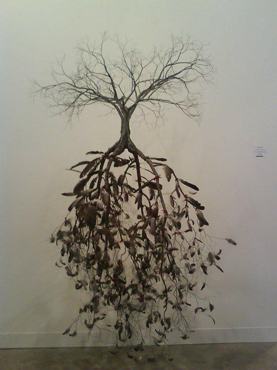 Jorge Mayet – arbre