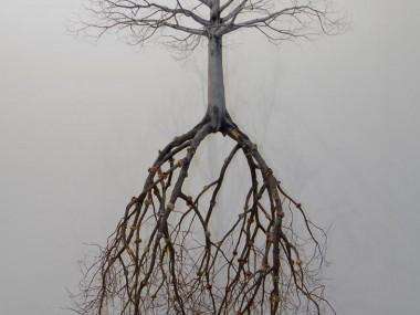 Jorge Mayet – sculptures trees