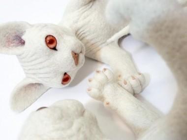 Zoë Williams – cats sculptures
