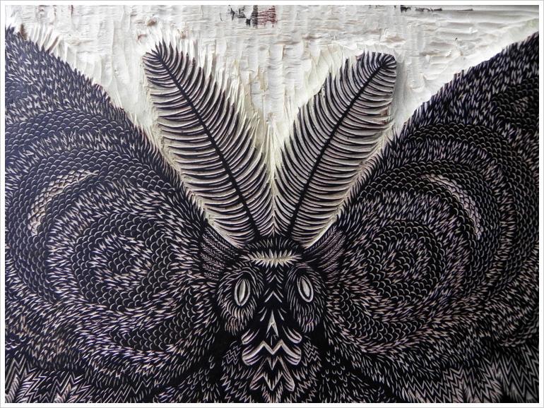 moth_face_woodcut