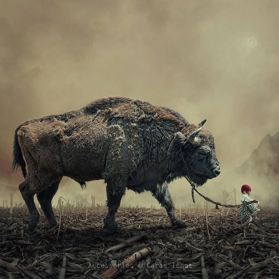 © Caras Ionut  – accessories / Creative Photo Manipulations