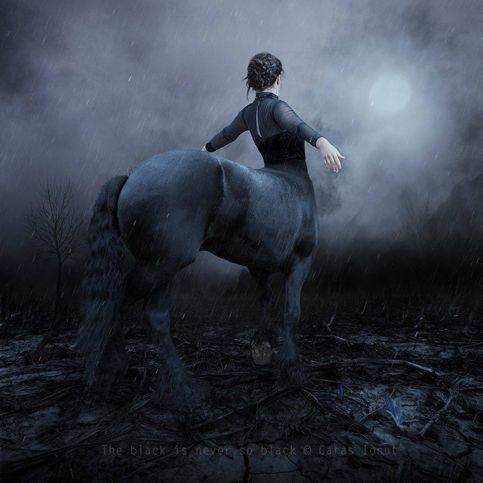© Caras Ionut – the black is never so black / Creative Photo Manipulations