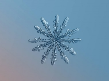 Alexey Kljatov- ChaoticMind75 photographer,snowflake cristal macro photography