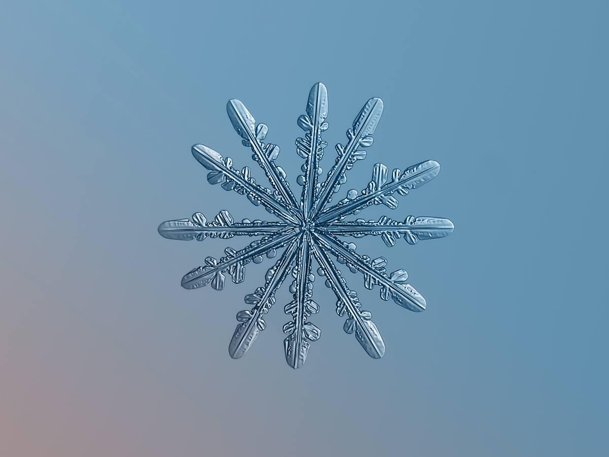 Alexey Kljatov- ChaoticMind75 photographer,snowflake cristal macro photography