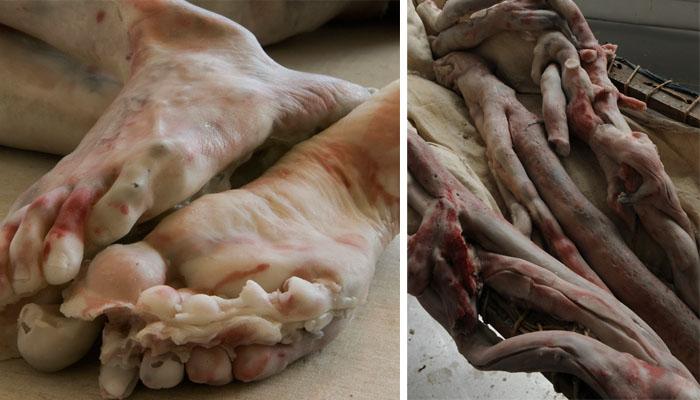 Berlinde De Bruyckere – sculptures macabres