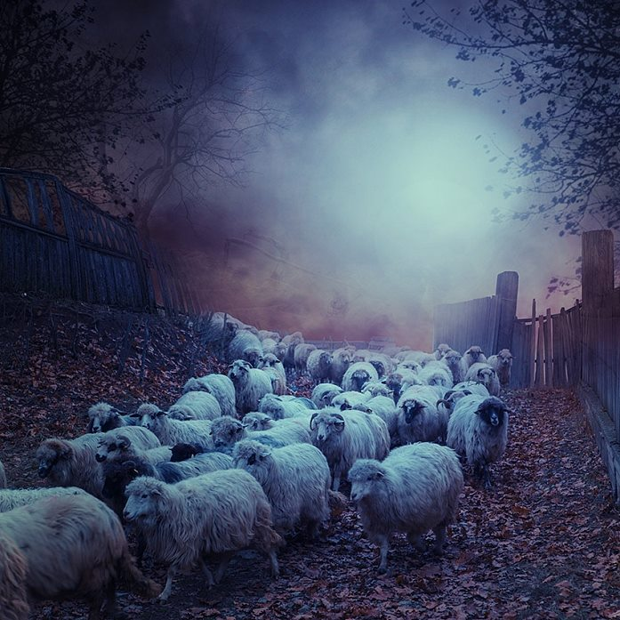 Caras Ionut – Backyard Ghost  / Creative Photo Manipulations
