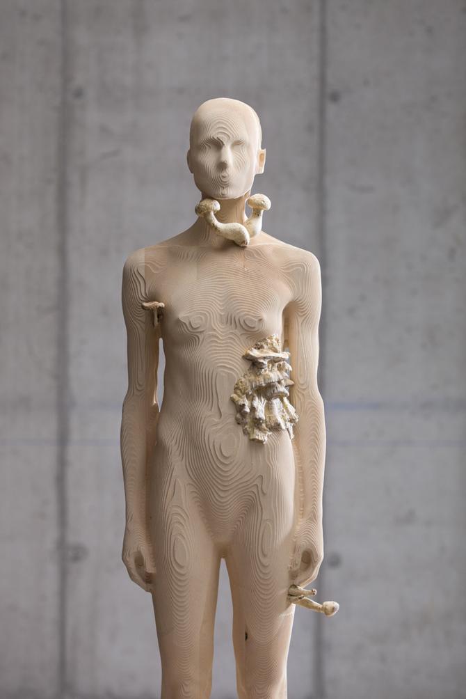 Aron Demetz – Pholiota Denuntians Bois d'érable et silicone, 200 x 50 cm, 2011