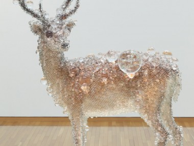 Taxidermy Sculptures by Kohei Nawa