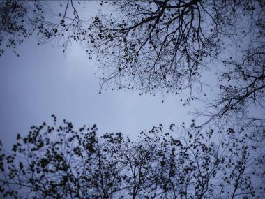 Yosuke Kashiwakura- photography