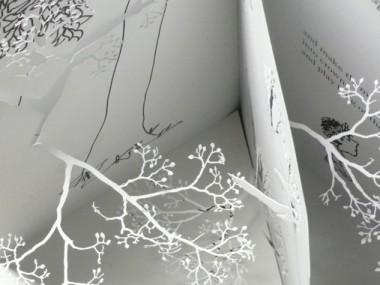 Yuken Teruya giving tree project
