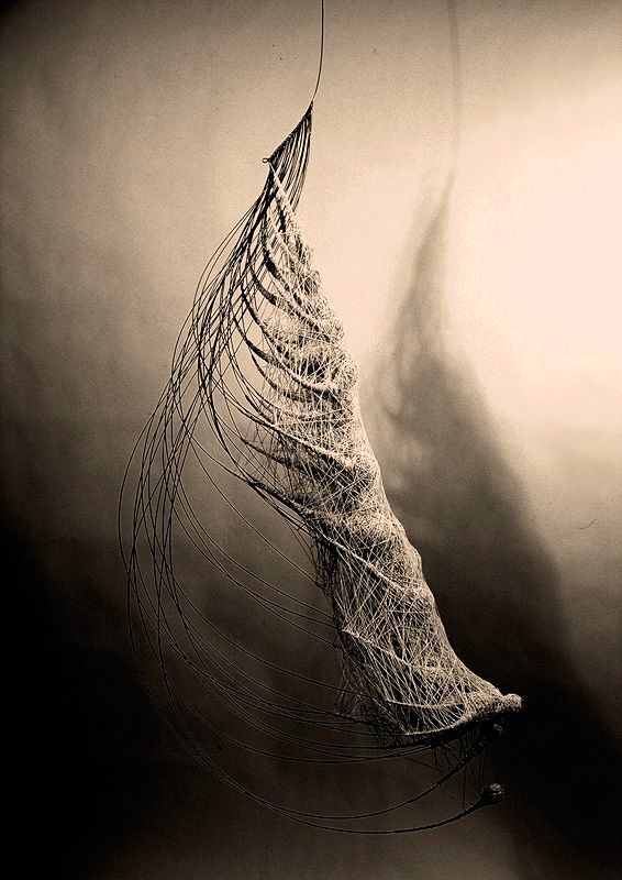 Anne Mudge – Congruence – Steel wire, fiber, pigment and beeswax