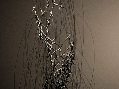 Anne Mudge -Sampler- Stainless steel wire, fiber, asphaltum