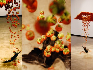 Caire Morgan – Fluid taxidermied crow and strawberries collide