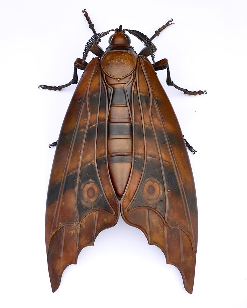 Edouard martinet – Moth – 31x16x7  / steampunk sculpture art