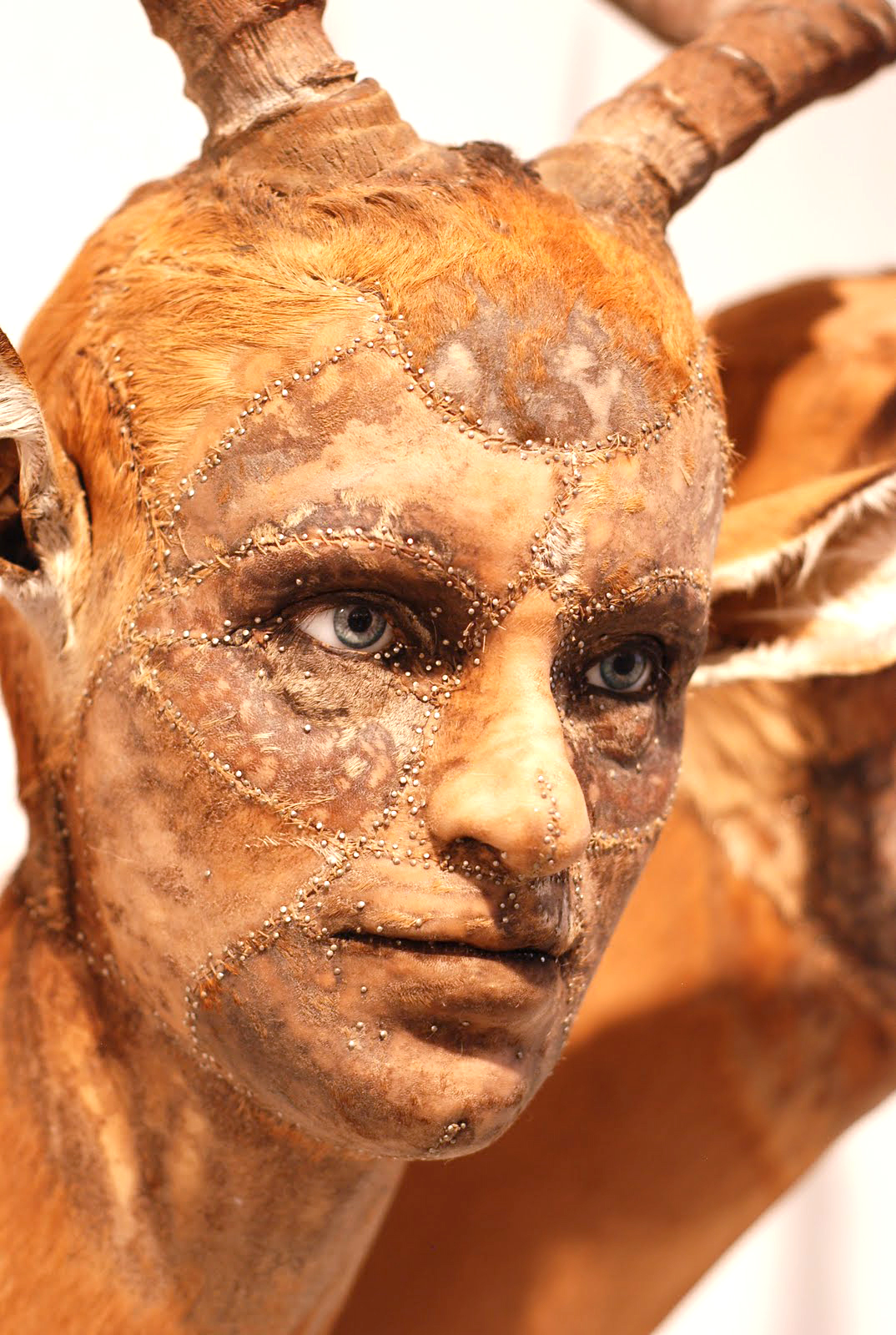 Kate Clark – taxidermie art – human animal