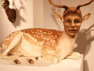 Kate Clark – taxidermie art sculpture animal / Human
