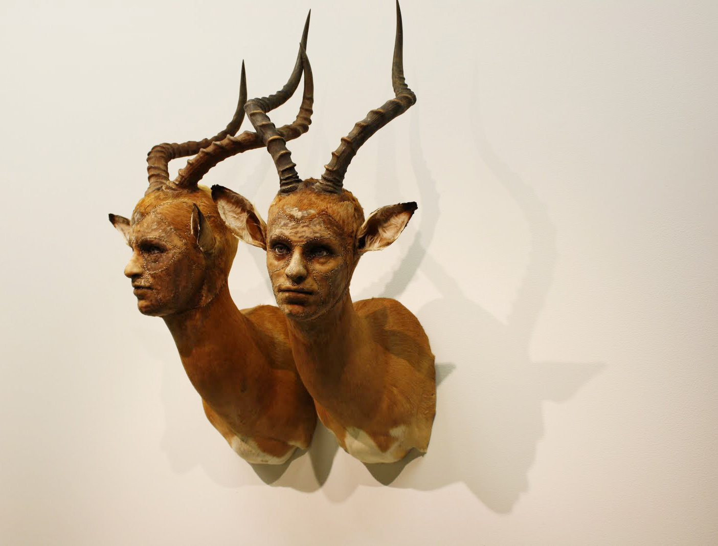 Kate Clark – taxidermie art sculpture animal / Human – cerf