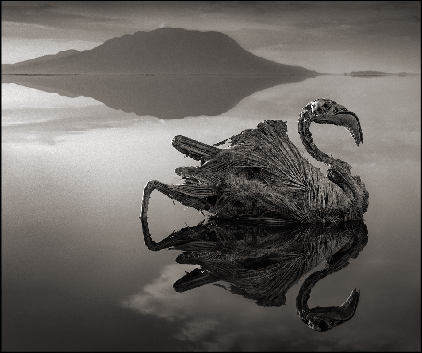 Nick Brandt – Tanzania lake