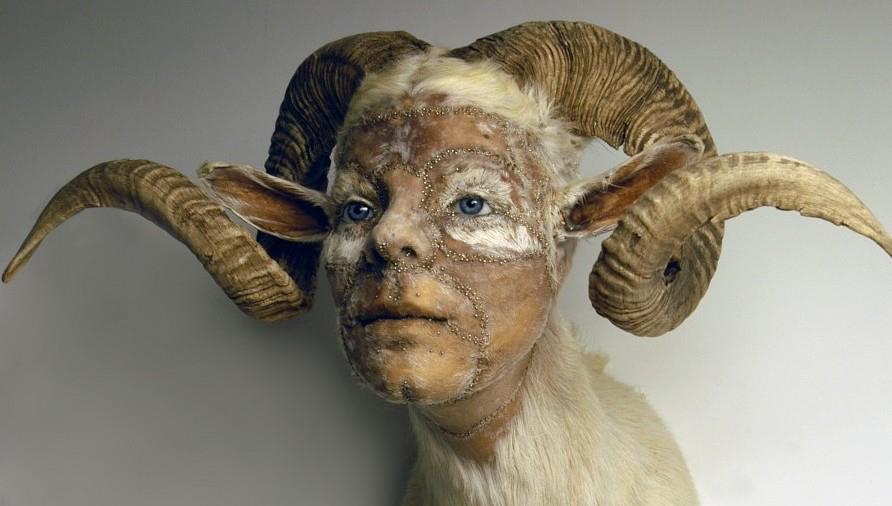 kate clark – sculptures – belier humain