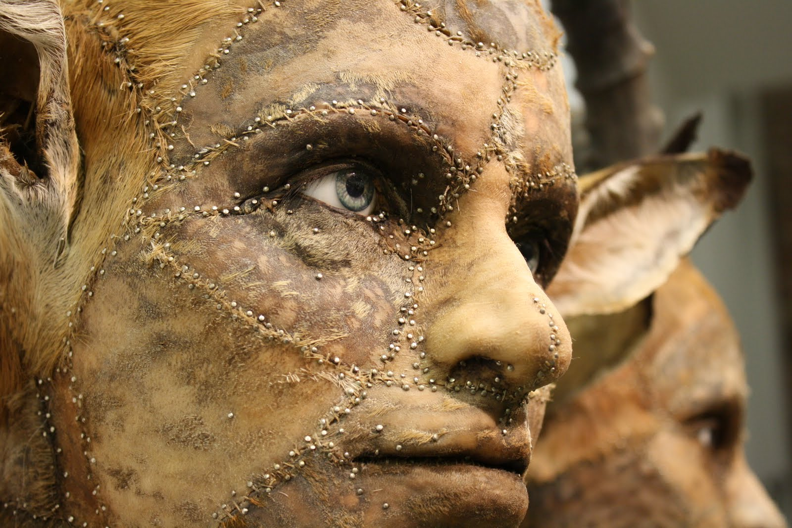 Kate Clark – taxidermie art sculpture animal / Human details