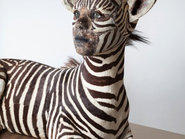 kate clark – taxidermy sculptures – She Gets What She Wants