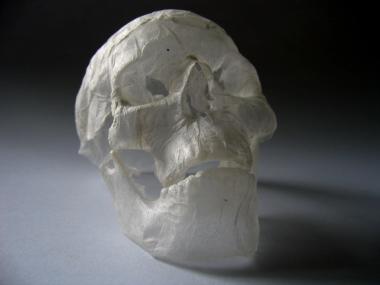 polyscene – tissue paper sculpture – skull