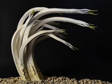 Alberto Bustos – Broto en blanco – Sculptures ceramiques