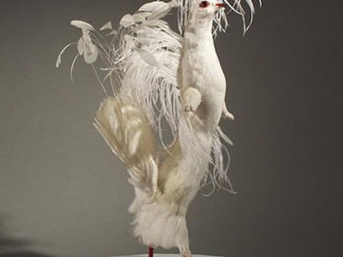 Enrique Gomez de Molina – Taxidermy Sculptures