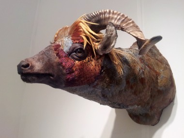 Enrique Gomez de Molina – sculptures taxidermy hybrid