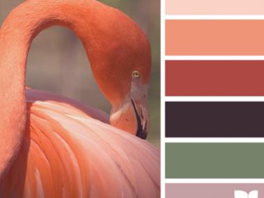 FlamingoTones_1 – design-seeds – choix teintes, tons, couleurs