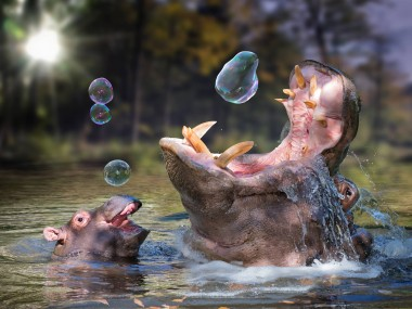 John Wilhelm is a photoholic -Playing around after a great meal / retouches photos