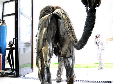 Selçuk Yılmaz – Lion back – Steampunk sculpture