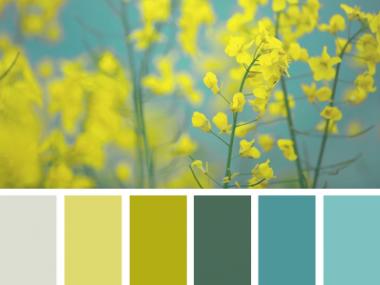 SpringFlora_2 – design-seeds – choix teintes, tons, couleurs