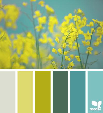 SpringFlora_2 - design-seeds - choix teintes, tons, couleurs