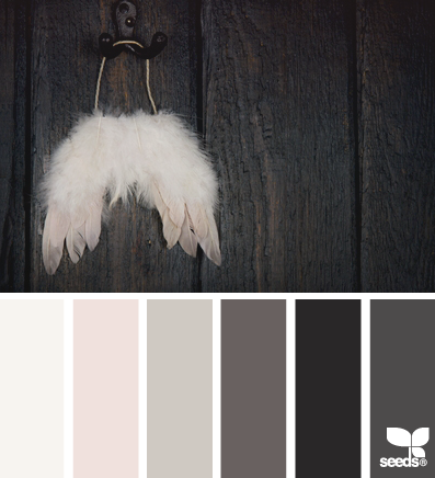 WingedTones_1 – design-seeds – choix teintes, tons, couleurs