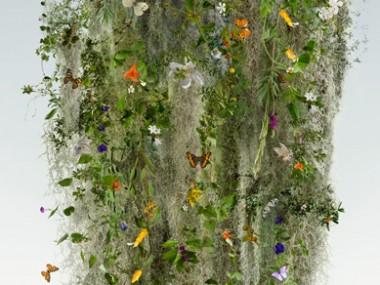 Ysabel Lemay – UNITY – Visual Artist