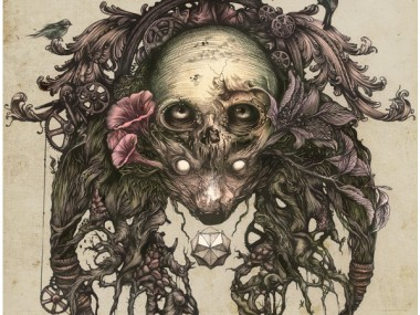DZO – artist illustration – fine art – skull – tete de mort illustrée