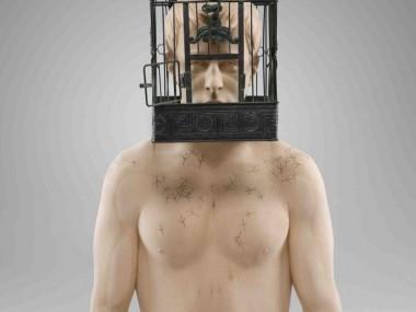 Matthias Verginer – free as a bird / wood sculptures